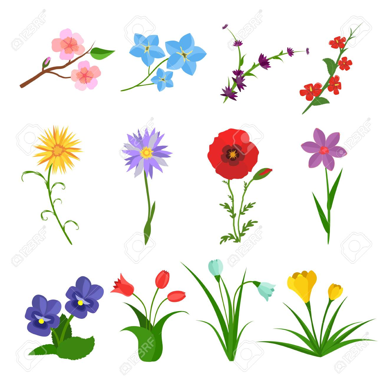 flowers vector set on