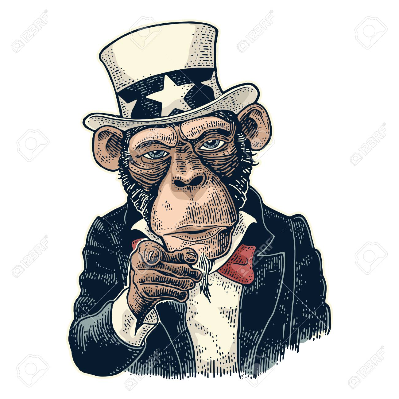 monkey uncle sam with