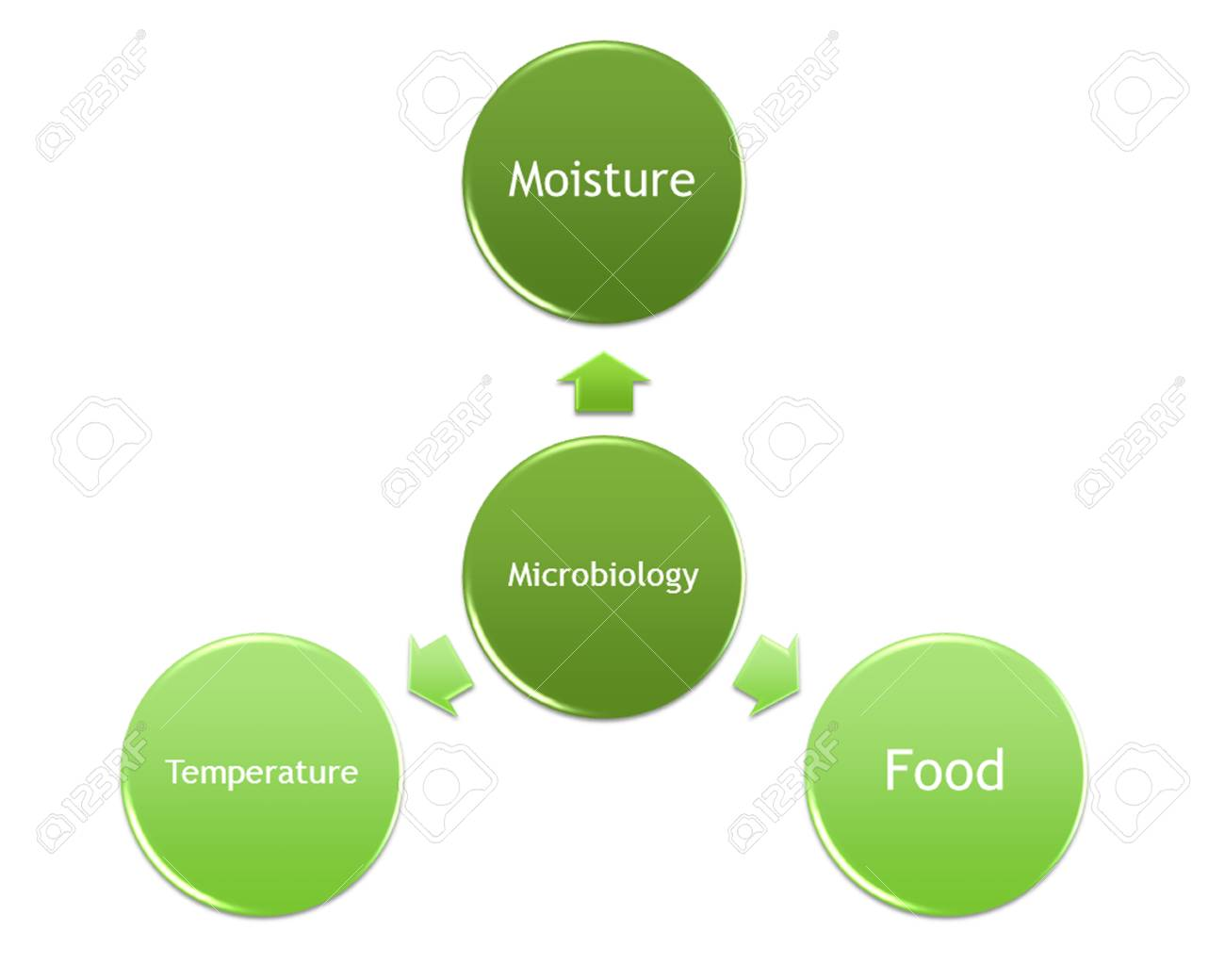 hight resolution of picture diagram of factors that make the microorganism grow stock photo 99781216