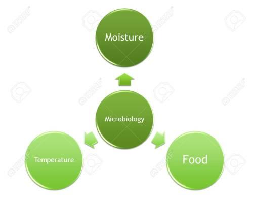 small resolution of picture diagram of factors that make the microorganism grow stock photo 99781216