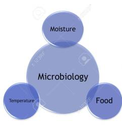 picture diagram of factors that make the microorganism grow stock photo 99781218 [ 1300 x 1040 Pixel ]