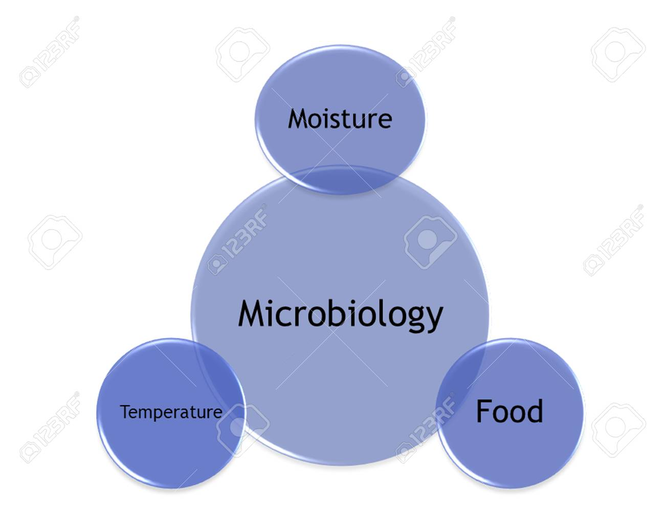 hight resolution of picture diagram of factors that make the microorganism grow stock photo 99781218