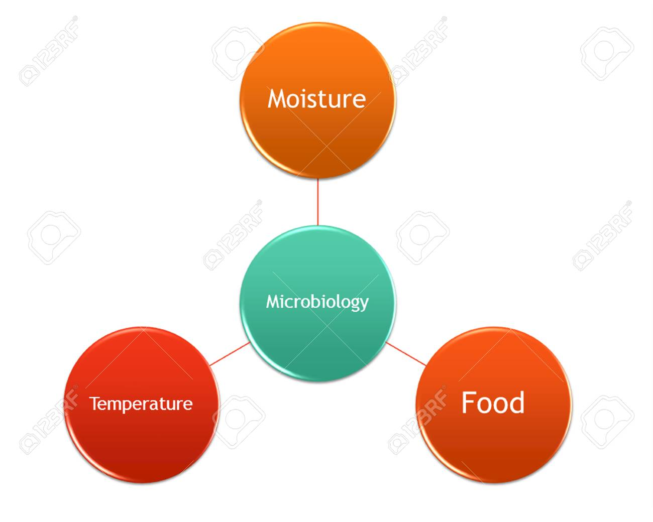hight resolution of picture diagram of factors that make the microorganism grow stock photo 99781222