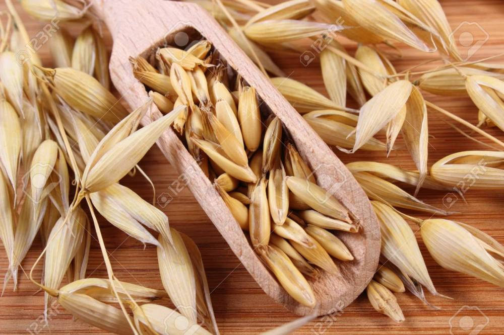 medium resolution of heap of organic oat grains on wooden spoon and ears of oat healthy food and