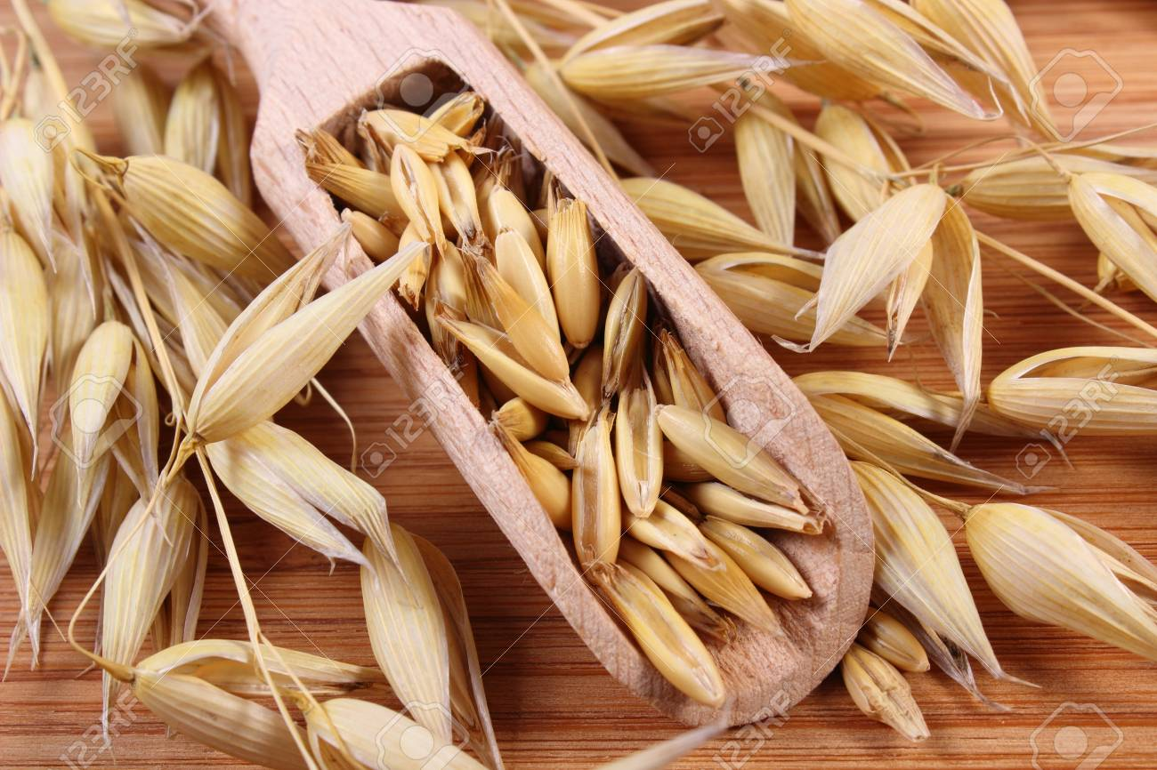 hight resolution of heap of organic oat grains on wooden spoon and ears of oat healthy food and