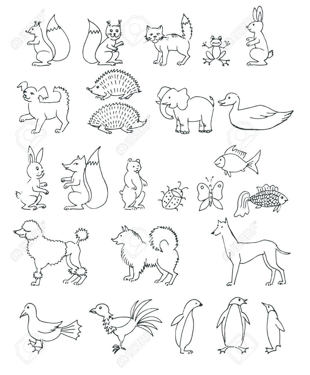 set hand drawn animals