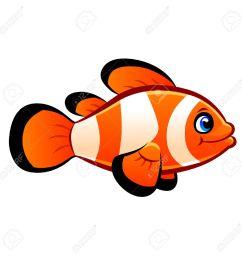 clownfish stock vector 29543892 [ 1300 x 1300 Pixel ]
