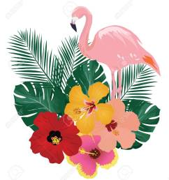 vector vector illustration of flamingo and tropical flowers background [ 1136 x 1300 Pixel ]