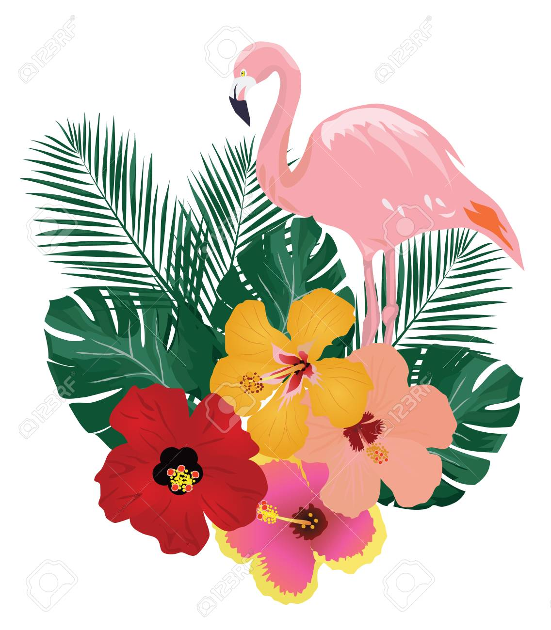 hight resolution of vector vector illustration of flamingo and tropical flowers background