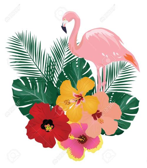 small resolution of vector vector illustration of flamingo and tropical flowers background