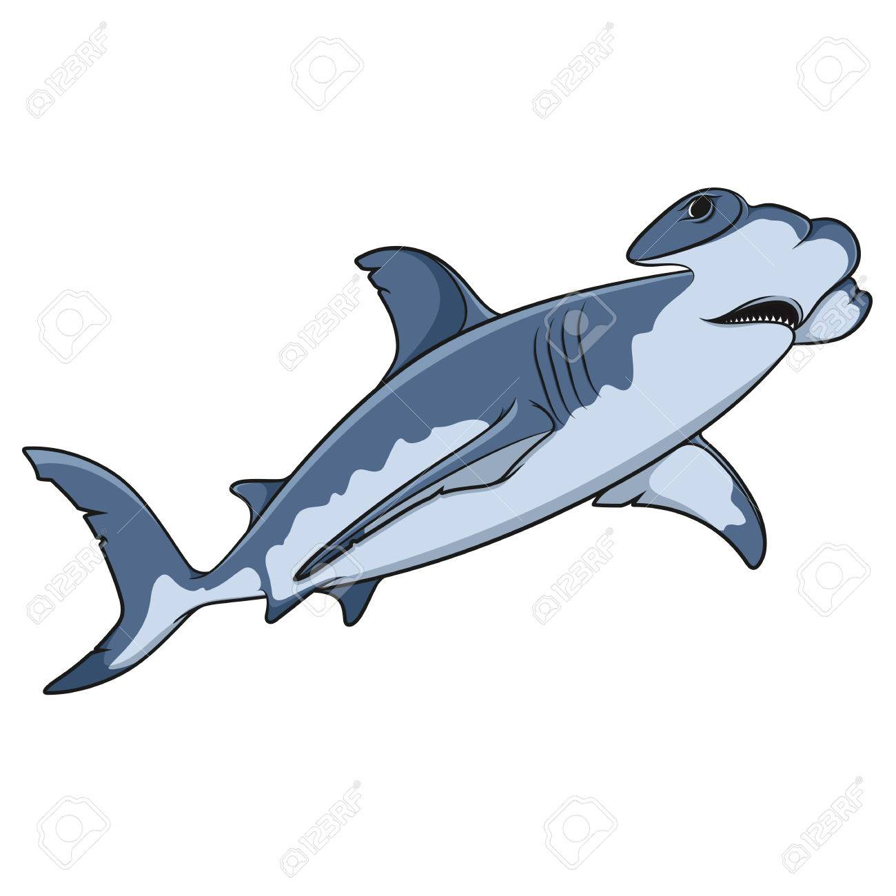 hight resolution of vector vector color illustration of the hammerhead shark isolated object on a white background