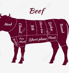 american cuts of beef scheme of beef cuts for steak and roast beef cattle diagram steak meat diagram [ 1300 x 1077 Pixel ]