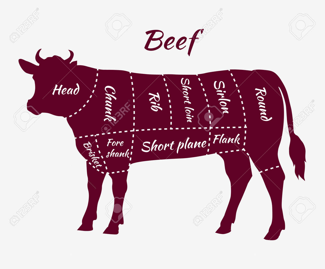 hight resolution of american cuts of beef scheme of beef cuts for steak and roast beef cattle diagram steak meat diagram