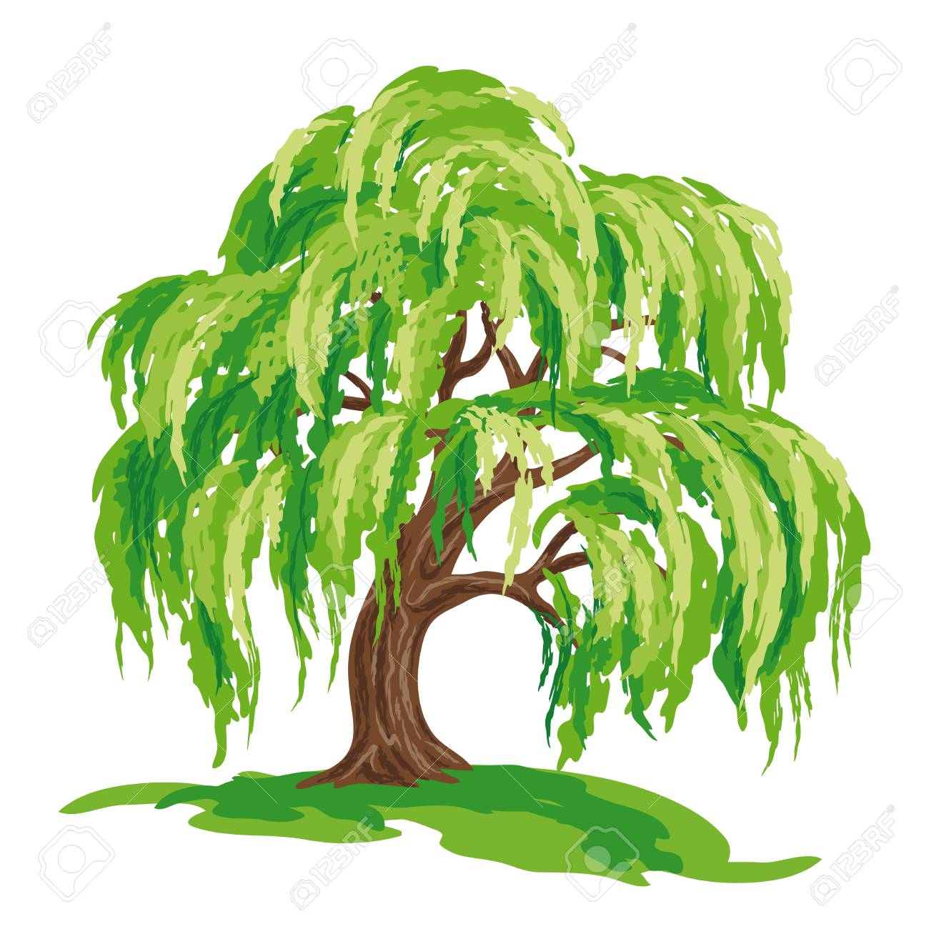 hight resolution of vector drawing of willow tree eps8 stock vector 98052977