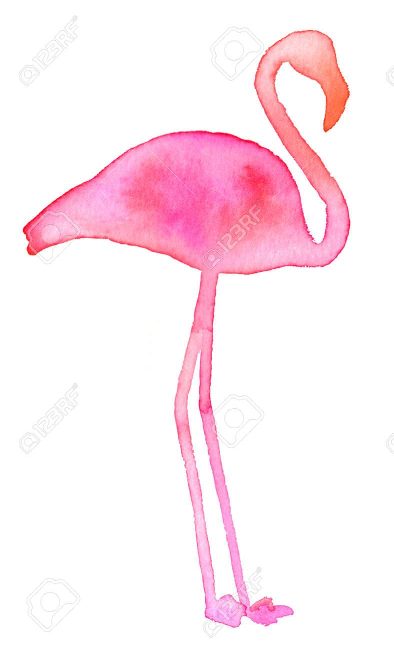 pink flamingo hand drawn