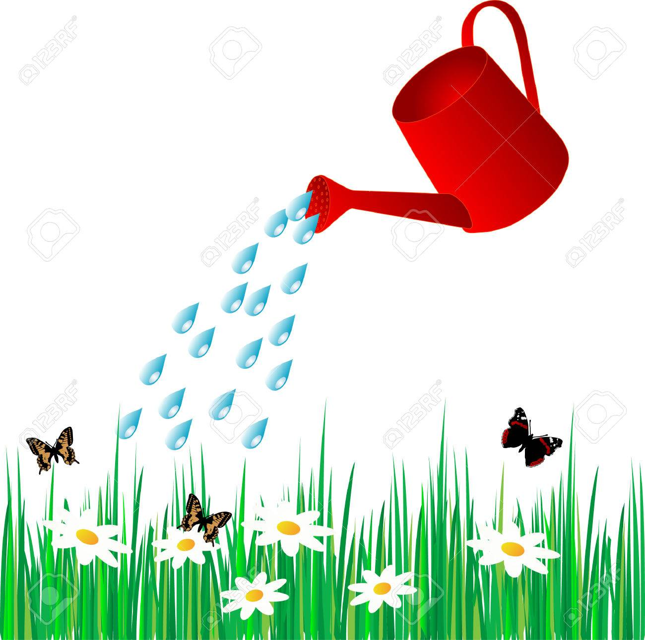 hight resolution of vector watering can water the grass