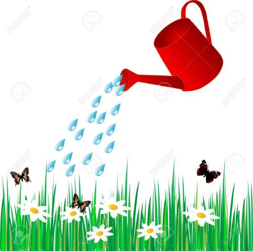 small resolution of vector watering can water the grass