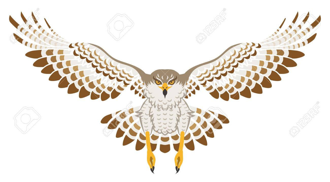 flying hawk front view