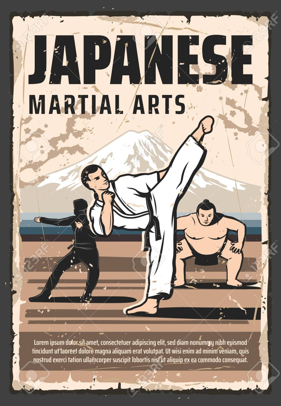 japanese martial arts and traditional fighting culture vintage