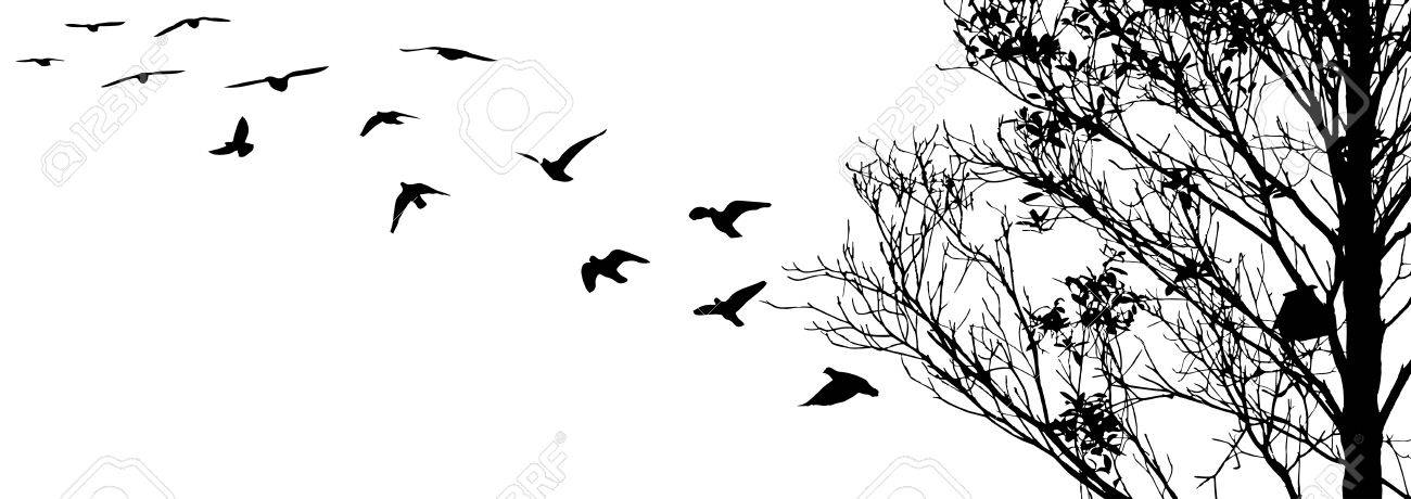flying birds and branch