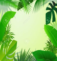 beautiful forest background stock vector 13408493 [ 1004 x 1300 Pixel ]