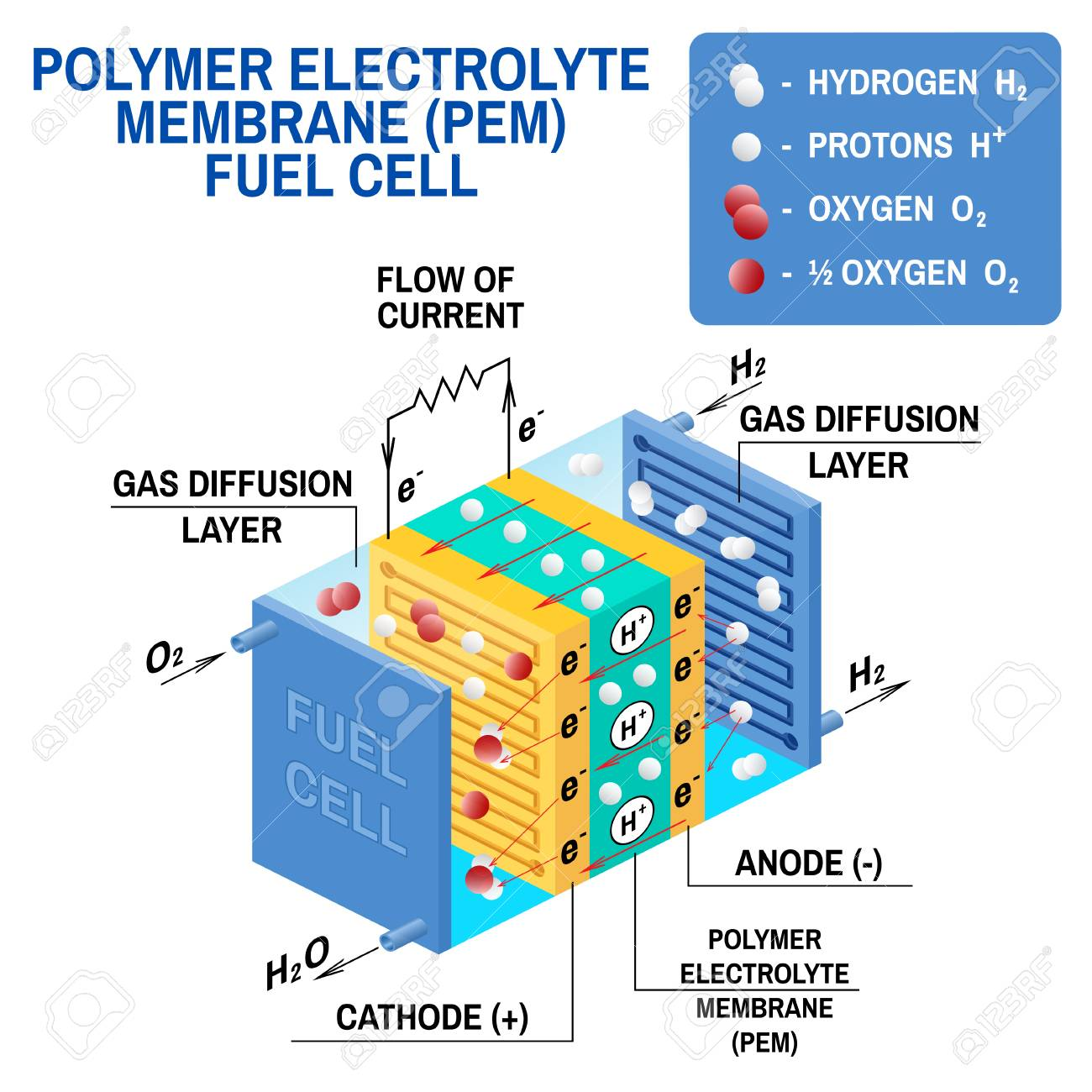 hight resolution of fuel cell diagram vector device that converts chemical potential energy into electrical energy