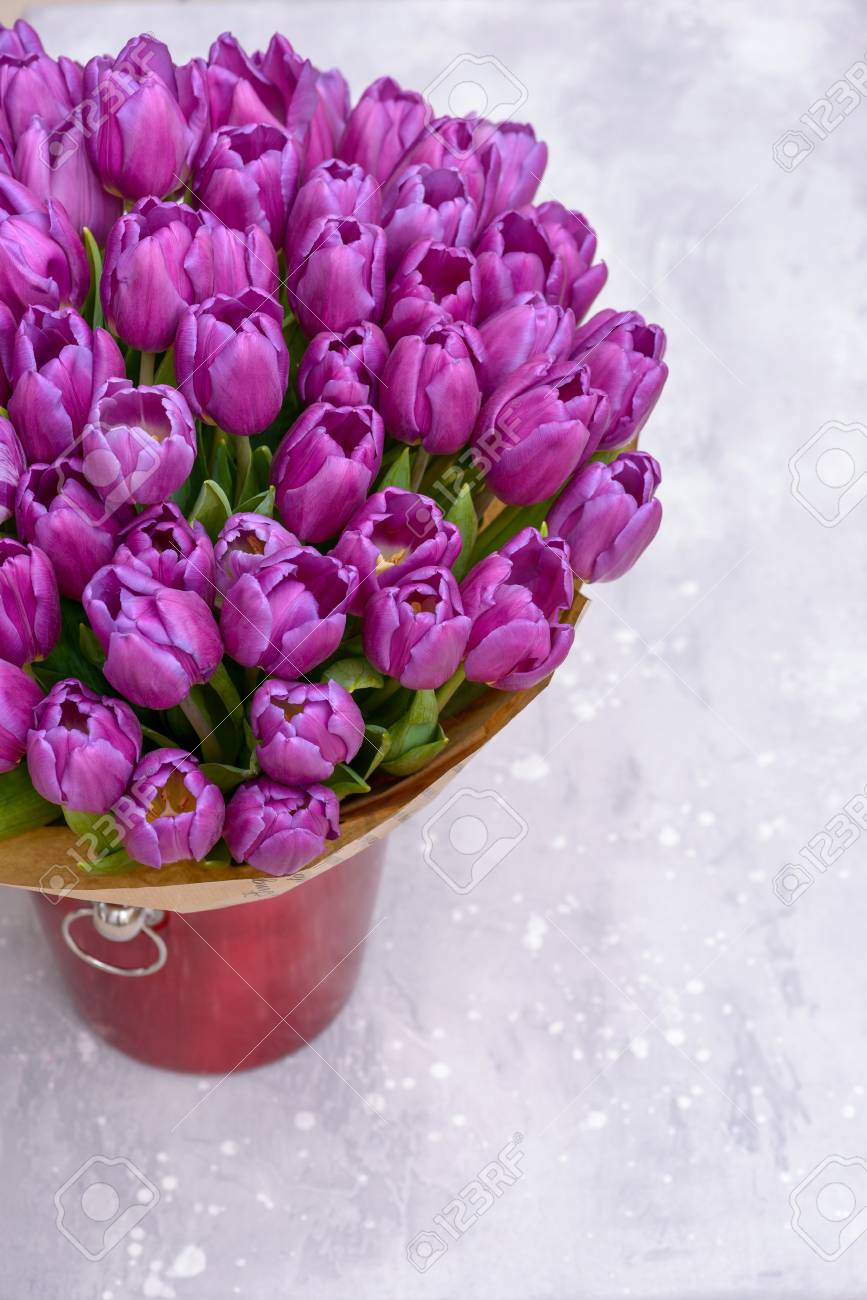 violet tulips in bucket