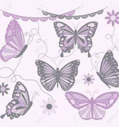 purple and grey butterfly butterfly silhouette flower lace border stock vector  [ 1300 x 1300 Pixel ]