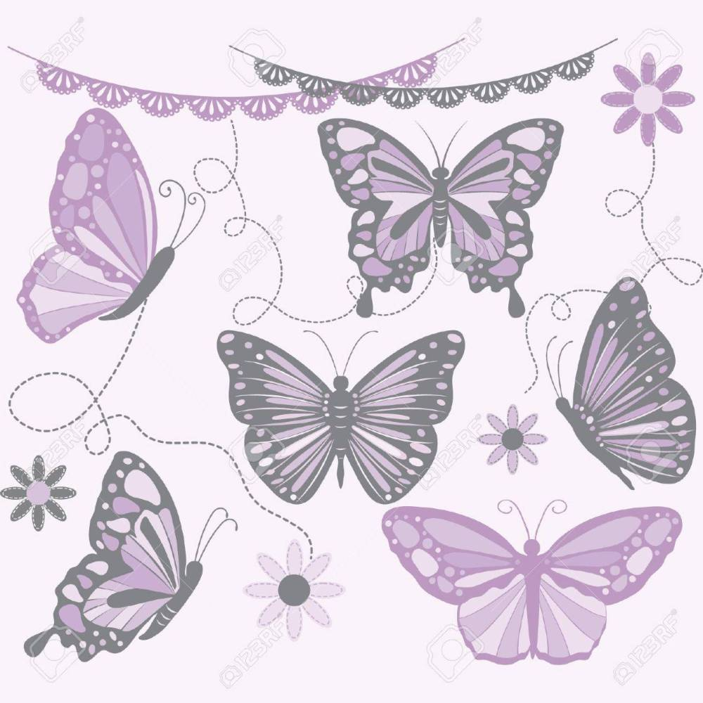 medium resolution of purple and grey butterfly butterfly silhouette flower lace border stock vector