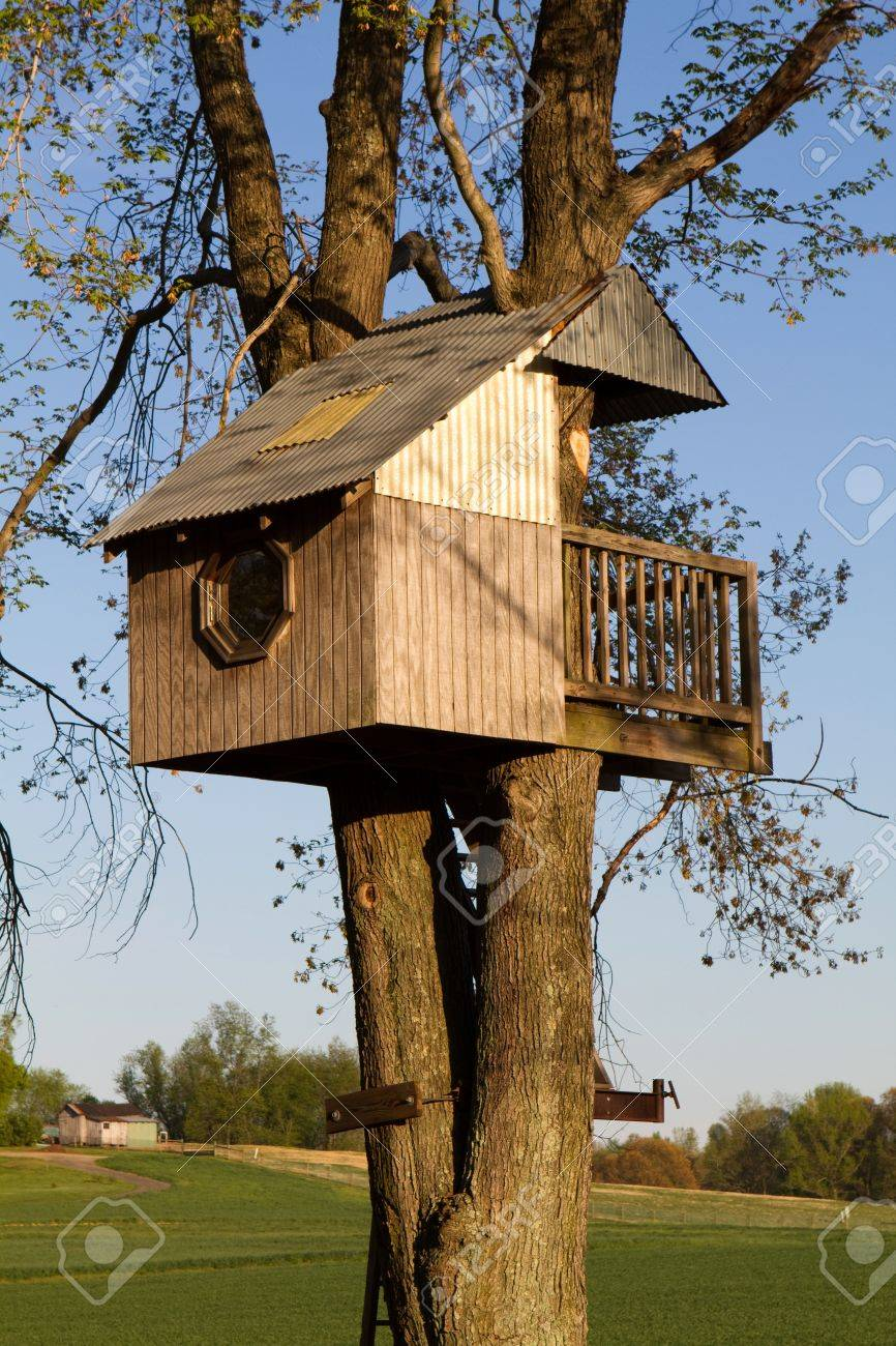 Homemade Children S Treehouse Is Built Elevated In A Large Tree Stock Photo Picture And Royalty Free Image Image 9514870