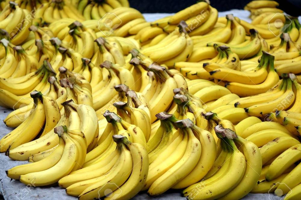 A Market Stall Sells Lots Of Bananas When The Fruit Is In Season Stock Photo, Picture And Royalty Free Image. Image 113823528.
