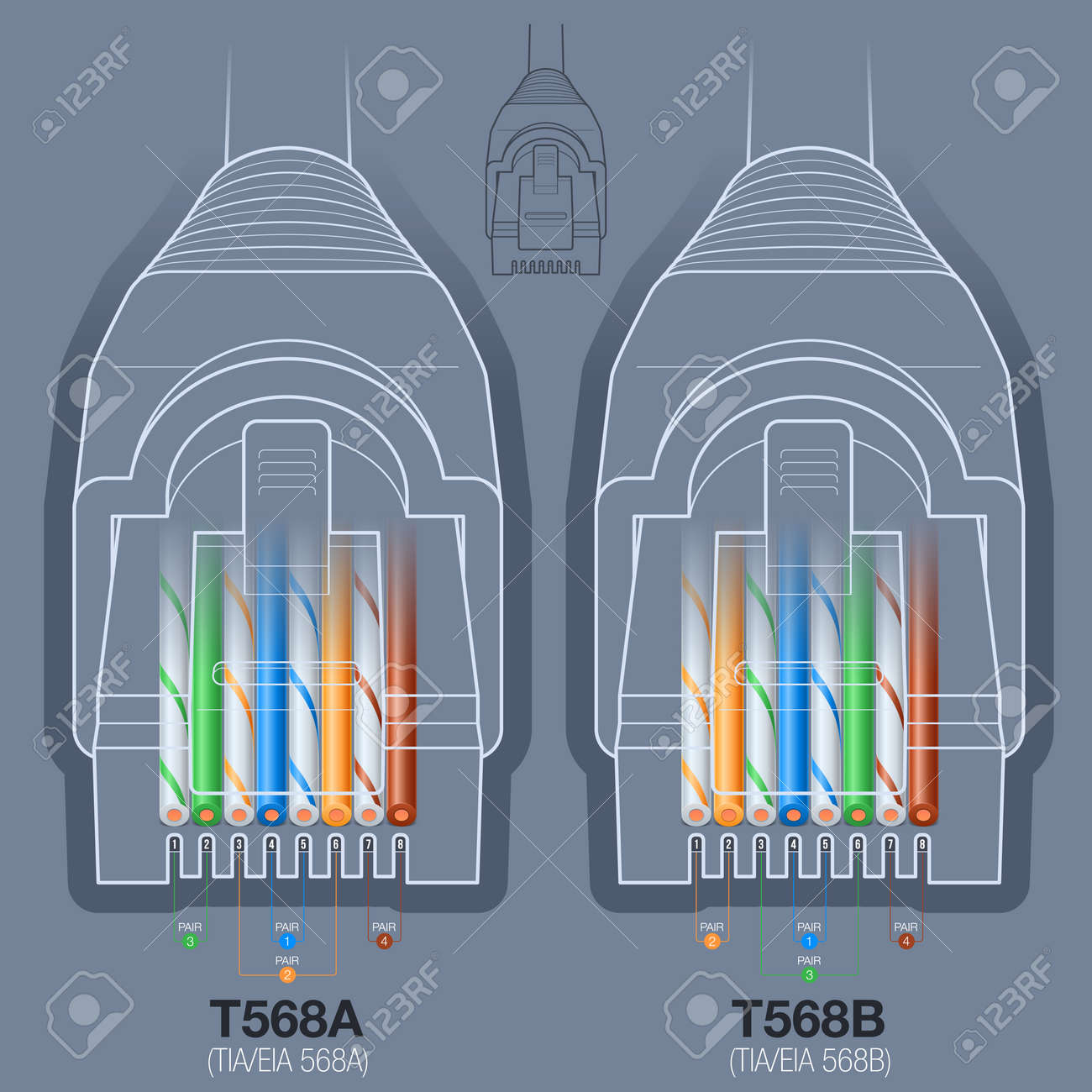 hight resolution of rj45 network cable connector t568a t568b wiring diagram stock vector 45694360
