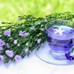 Violet Tea And Blossoms With Green Background Stock Photo Picture And Royalty Free Image Image 13720299