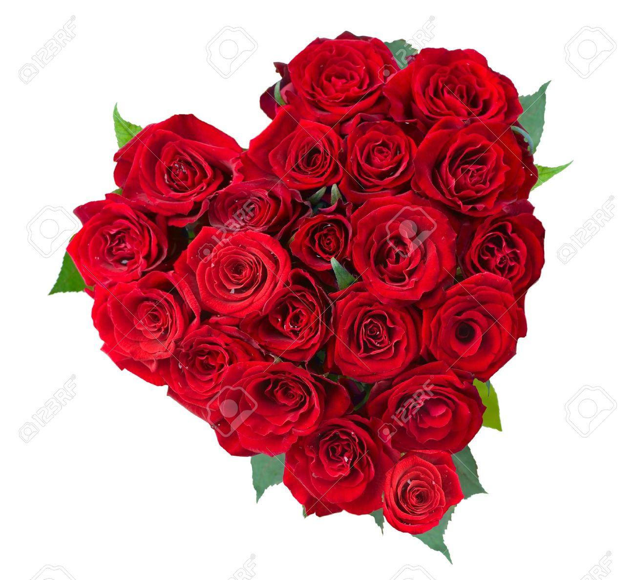 rose flowers heart over