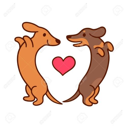 small resolution of cute cartoon dachshunds in love adorable wiener dogs looking at each other in heart shape
