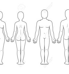male and female body front and back view blank human body template for medical infographic [ 1300 x 990 Pixel ]