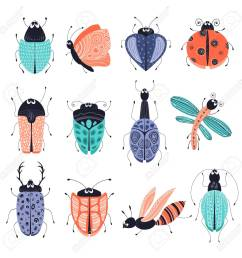 discovery set of cute cartoon bugs or beetles butterflies isolated elements clipart on [ 1300 x 1300 Pixel ]