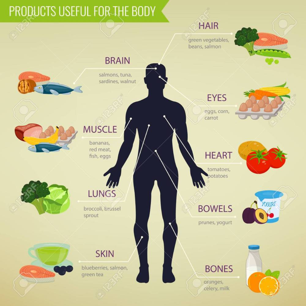 medium resolution of healthy food for human body healthy eating infographic food and drink vector illustration