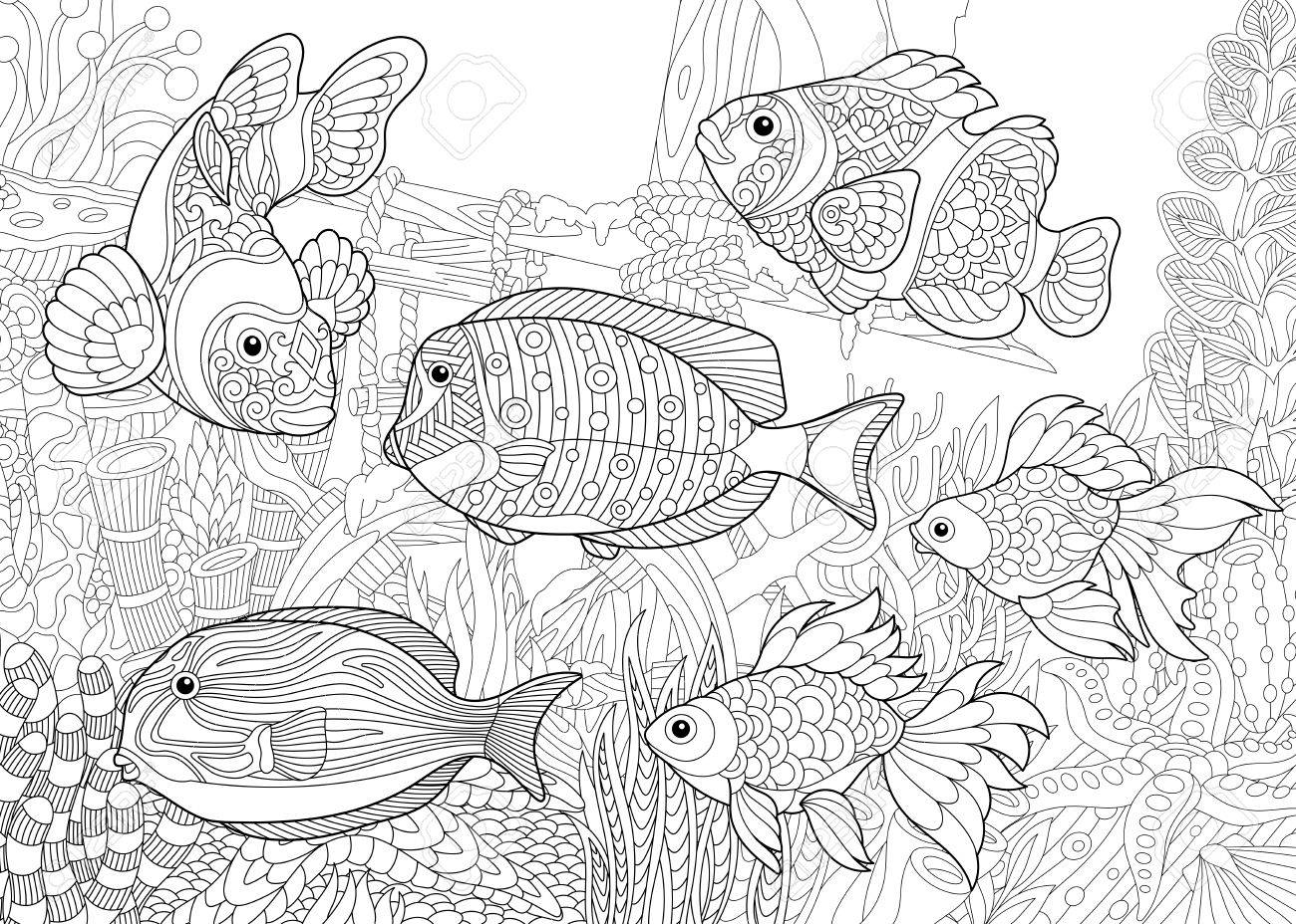 Coloring Page Of Underwater World Royalty Free Cliparts Vectors