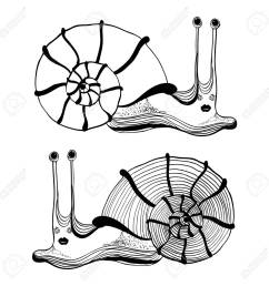cartoon drawing of cute funny snail stock vector 19079987 [ 1300 x 1300 Pixel ]