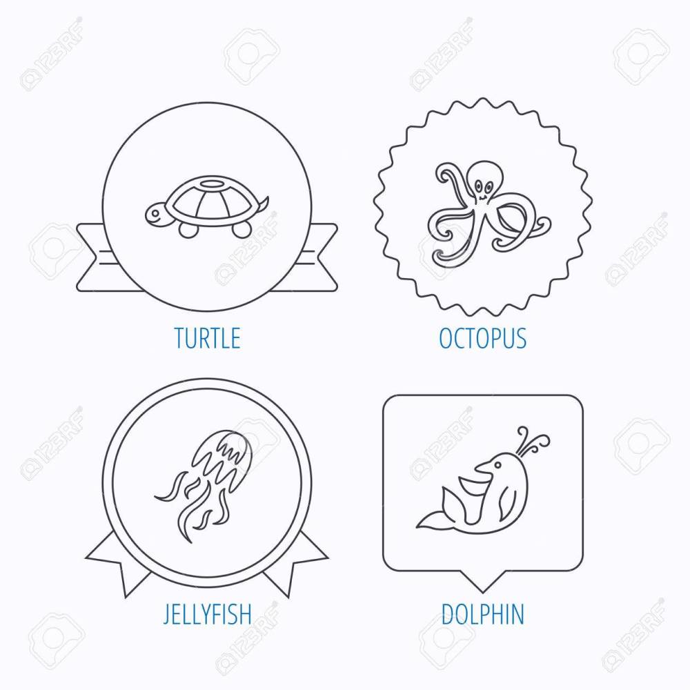 medium resolution of octopus turtle and dolphin icons jellyfish linear sign award medal star label