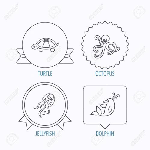 small resolution of octopus turtle and dolphin icons jellyfish linear sign award medal star label