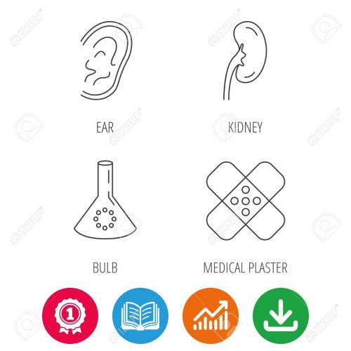 small resolution of lab bulb medical plaster and ear icons kidney linear sign award medal