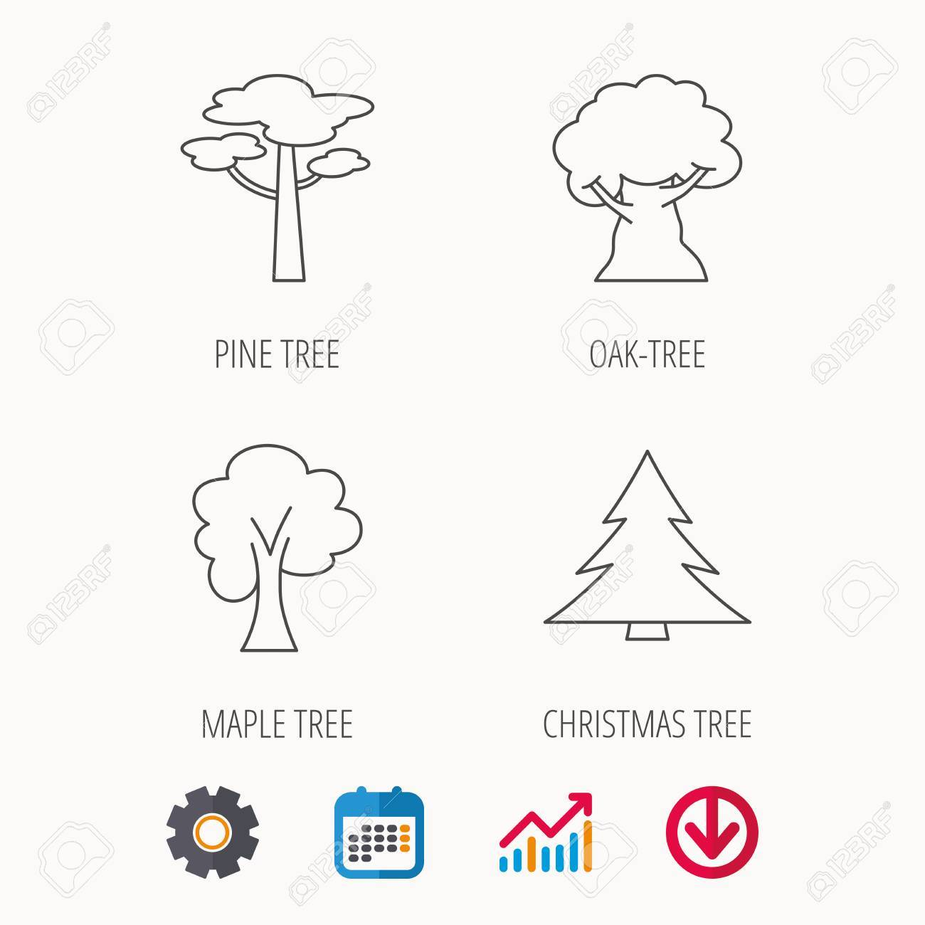 hight resolution of pine tree maple and oak tree icons forest trees linear signspine tree maple and