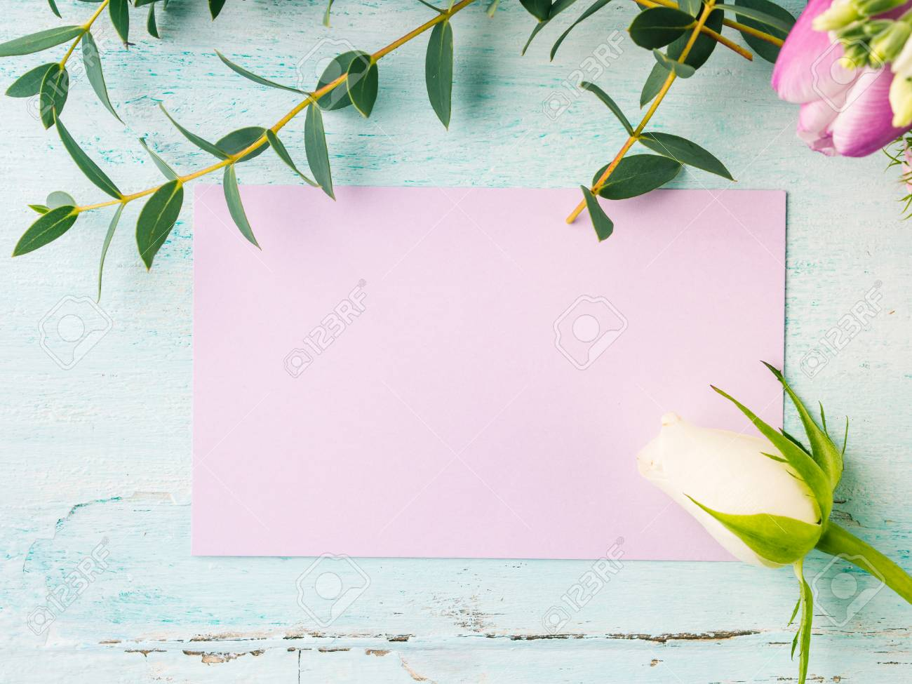 empty purple card flowers tulips roses spring pastel color background
