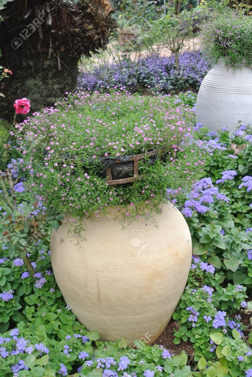 Blumen Und Garten Landschaft Mit Blühenden Blumen Garten Neudelhi