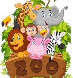 collection cartoon dierentuindieren stock illustratie [ 903 x 1300 Pixel ]