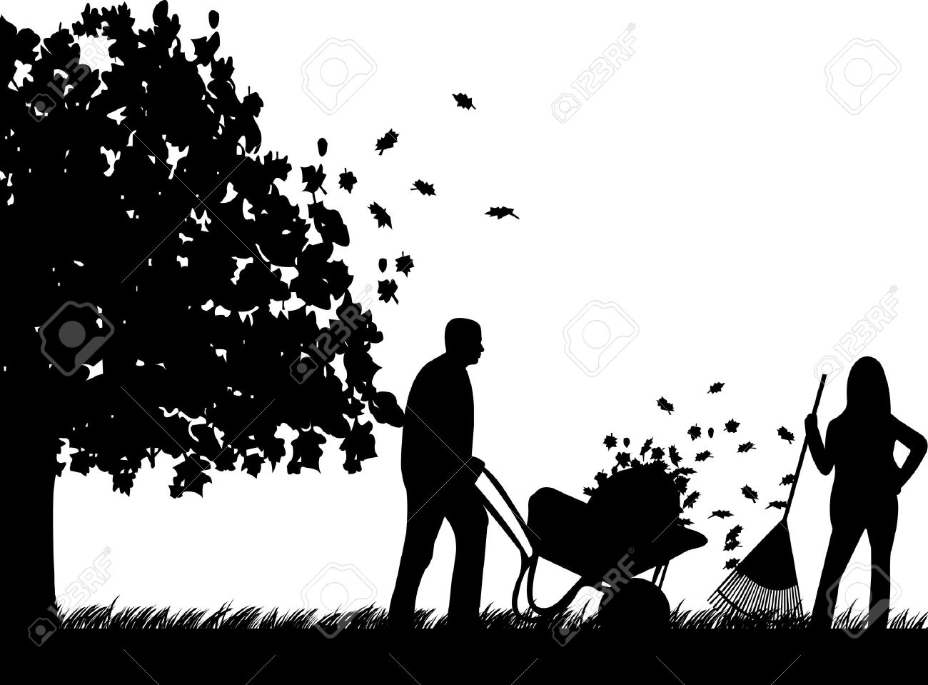 hight resolution of couple raking leaves in autumn or fall in garden or yard under the tree silhouette stock