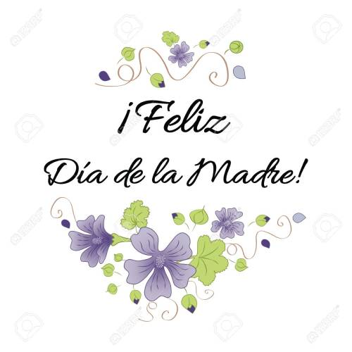 small resolution of happy mother day banner decorated hand drawn meadow flowers lettering title in spanish stock vector