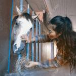 Pretty Asian Woman Petting Horse In A Stable Stock Photo Picture And Royalty Free Image Image 81640164